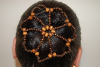 Dark Two-Tone Natural Wood Bead Hair Bun Cover